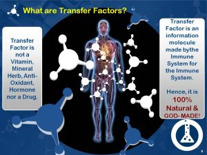 what_are_transfer_factors